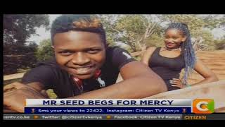News Trends : Mr Seed begs for mercy