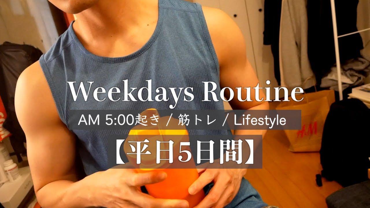 【ルーティン】筋トレ大好きIT企業勤務サラリーマン(26)の平日Vlog#22