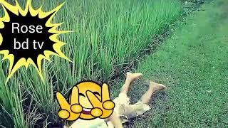 Download Video দেখুন ছেলে ও মেয়ের কান্ড MP3 3GP MP4