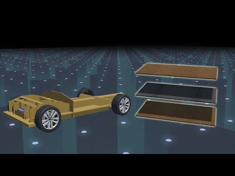 Dutch students develop world's first biodegradable car
