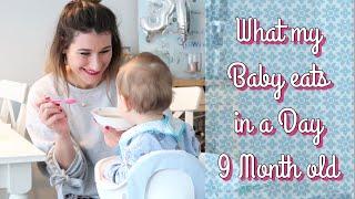 Ich zeige euch was mein Baby an einem Tag isst | 9. Monat | Beikost & PRE Milch