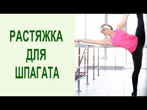 Как сесть на шпагат в домашних условиях: йога упражнения для растяжки на шпагат. Yogalife