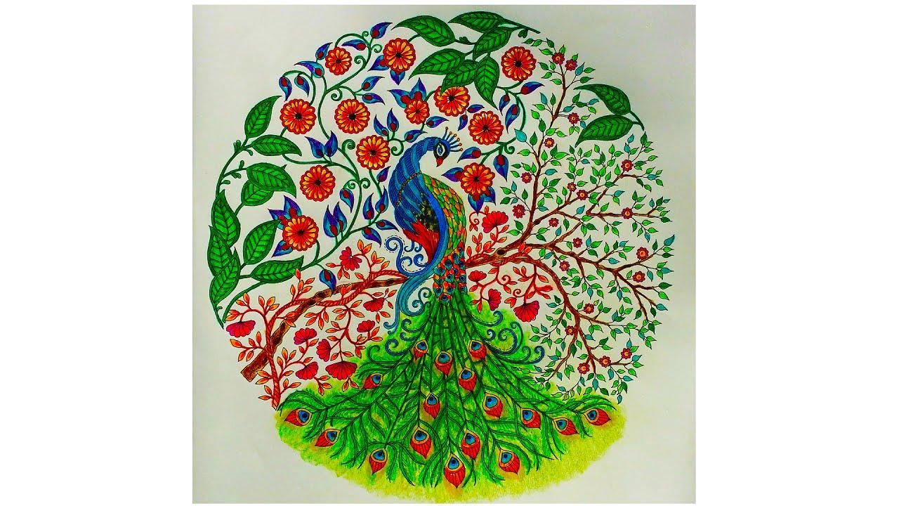 colouring book the secret garden peacock - Peacock Coloring Book