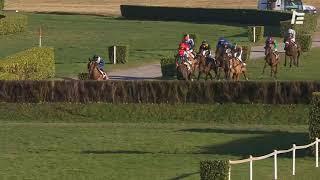 Vidéo de la course PMU 133EME GRAND PRIX DE PAU - BIRABEN FOIE GRAS - PRIX ANDRE LABARRERE