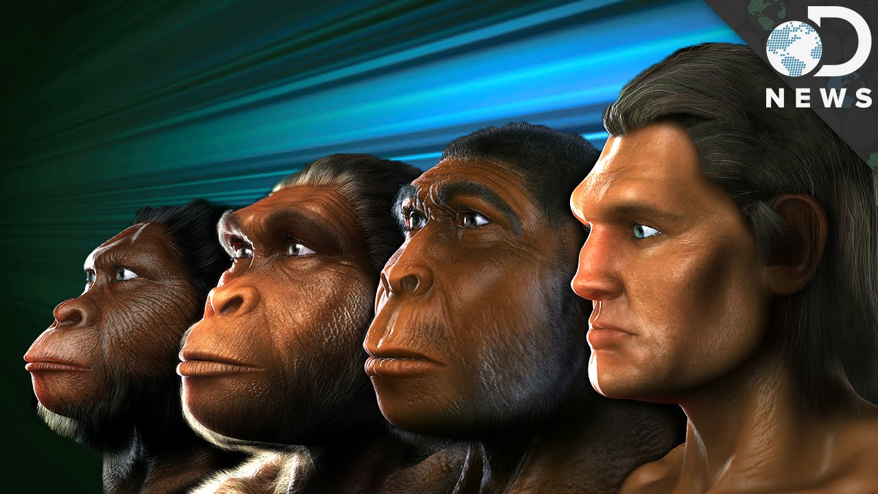 how do we know who our human ancestors were youtube