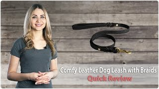 Comfy Leather Dog Leash With Braids And Solid Fittings - Quick Review