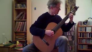 Sokolov Polka (Russian guitar)