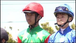 ダーレー・ジャパン杯 第2回 門別ポニーレース