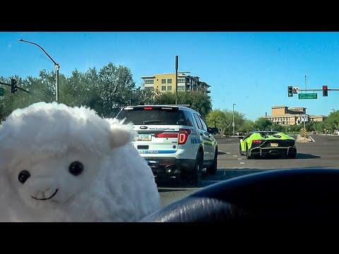 Note to Self: Never Accelerate a Lamborghini in Front of Arizona Cops