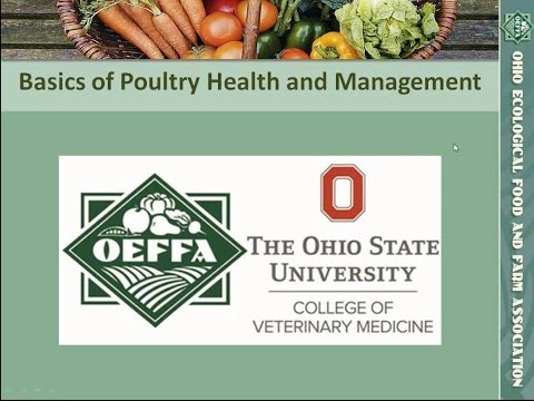 Basics of Poultry Health and Management