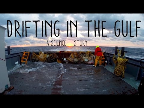 Drifting in the Gulf - A Science Story