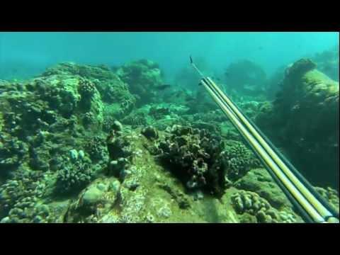 Northside Dive, Lanai