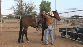 Horse in bucking fit  how to control a bucking horse