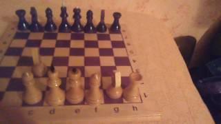 Как научиться играть в шахматы за 5 минут