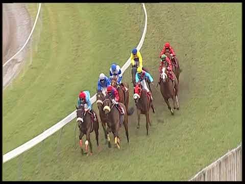 136 - 2018 THE MAURITIUS GUINEAS CUP