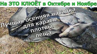 ЛОВИ ПО ХОЛОДНОЙ ВОДЕ НАСАДКА ДЛЯ РЫБАЛКИ НА КАРАСЯ ЛЕЩА Супер рыболовная насадка Аттрактант