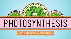 Photosynthesis: Crash Course Biology #8