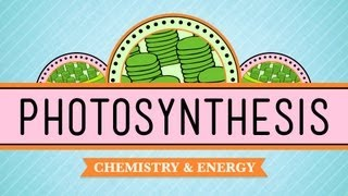 CrashCourse: Photosynthesis thumbnail