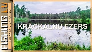 Разведка дикого озера на карася, ловим на поплавок и фидер | Karūsu cope, blakus Krackalnu ezeram