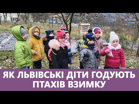 Медіа-хаб ТВОЄ МІСТО: Як львівські діти годують птахів взимку. Чому це важливо робити? Стрім наживо