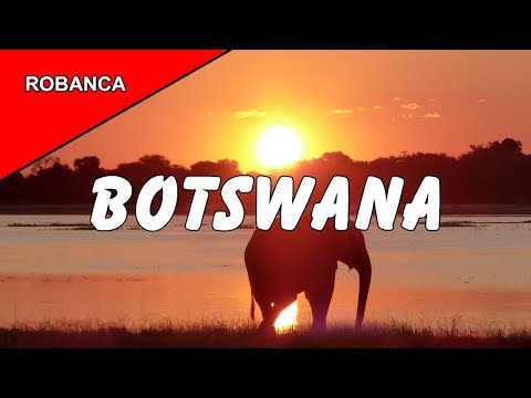 Botswana Safaris in Okavango Delta & Chobe National Park