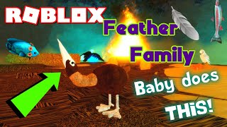 ROBLOX FEATHER FAMILY Going Fishing mit dem PELICAN + THE BABY CAN DO THIS! 😮 Emotes