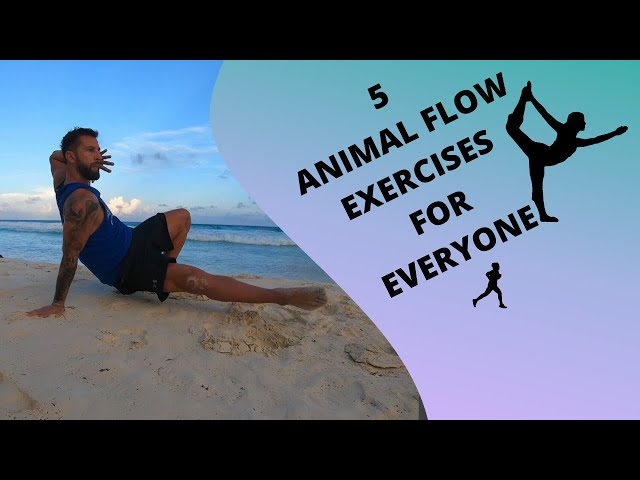 5 Animal Flow Exercises for everyone!