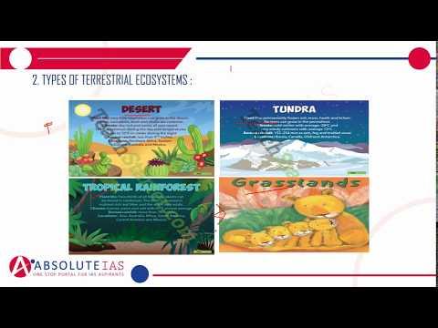Terrestrial  Ecosystem (Part 1) | Environment & Ecology | IAS