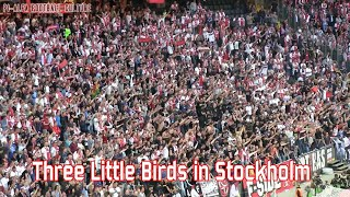 Three little birds in Stockholm (Ajax)