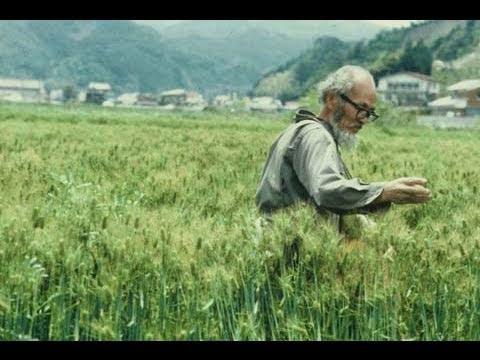 Masanobu Fukuoka rice and orchard techniques