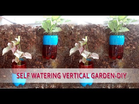 How to Make A Self watering Vertical Garden DIY