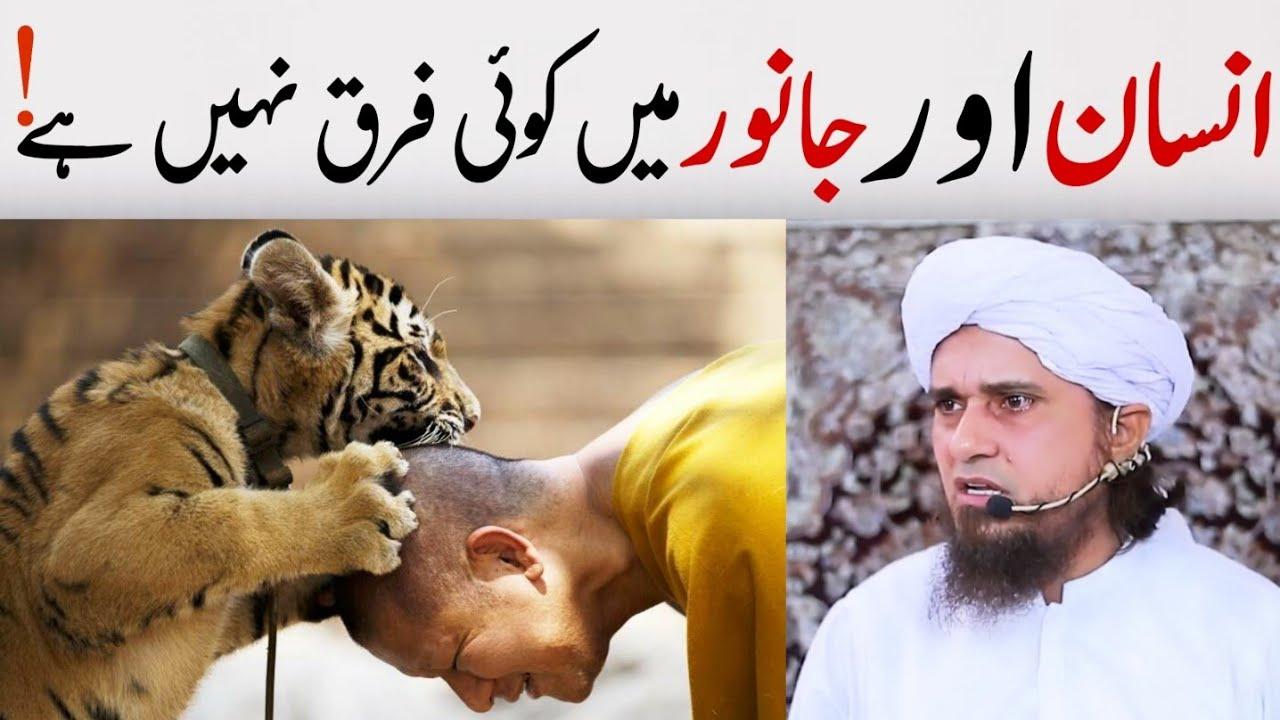 Insan aur janwar Main koi Farq Nahi  Mufti Tariq Masood | @Islamic YouTube