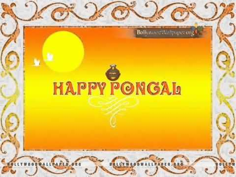    HAPPY PONGAL // SANKRANTHI   