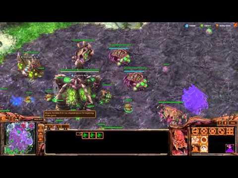 StarCraft II ZvZ tutoring