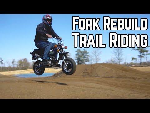 Honda Trail 70: a Real Trail Bike? + Fork Rebuild