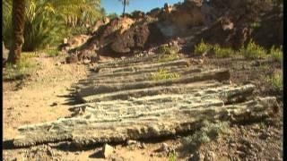C'est pas sorcier - Oasis une escale dans le désert thumbnail