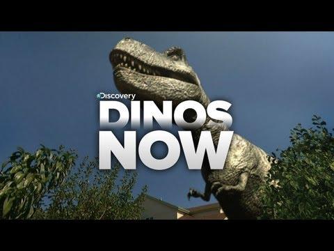 Dinos Invade Our World!