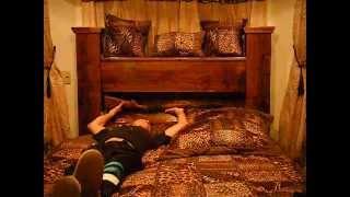 Gun Bed
