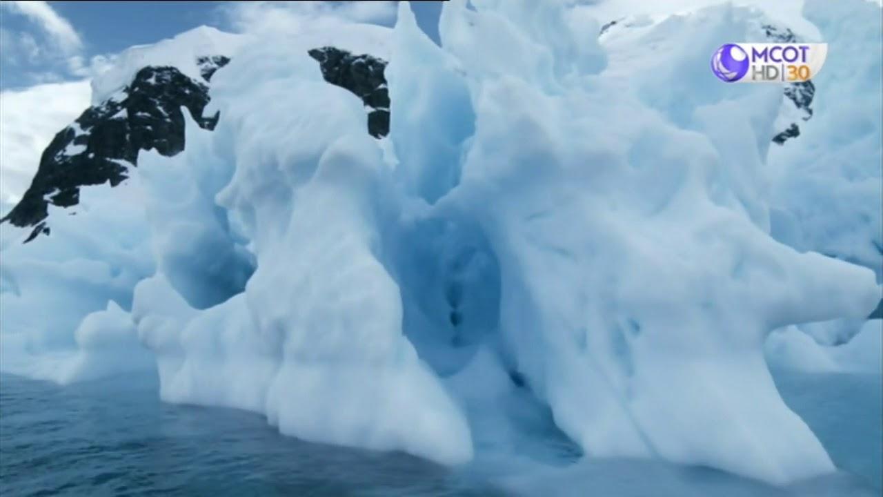 ชีวิตสัตว์ มหัศจรรย์  HD ตอน แอนตาร์กติกา มหัศจรรย์แห่งท้องทะเล