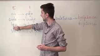 Bosnian/Croatian/Serbian Grammar: The Difference between Ekavian and Ijekavian Dialects