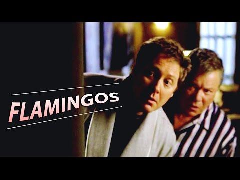 Flamingos   Alan & Denny   Boston Legal