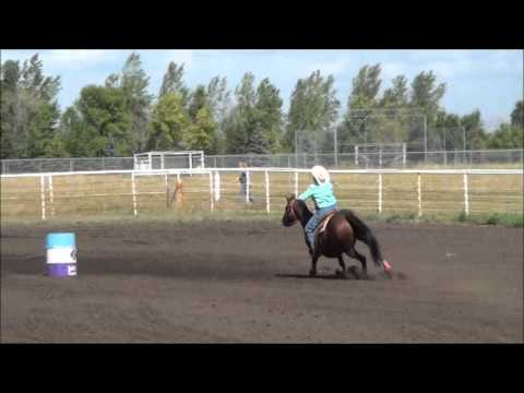 McHenry County Saddle Club Barrel Racing District Finals August 31 2013.