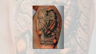 Татуировки фото скорпионов