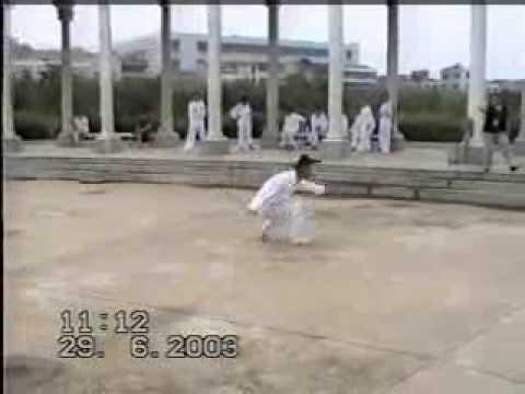 chinese wudang kungfu,real kungfu