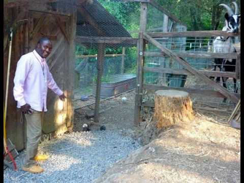 The REAL Green Revolution In Africa: Permaculture in Zimbabwe With Julious Piti