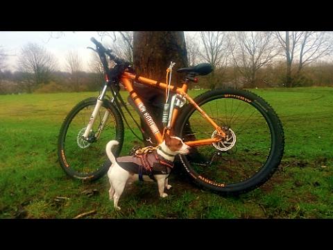 Relaxdays Bike Springer Dog Attachment #2 - Training The Dog Vlog
