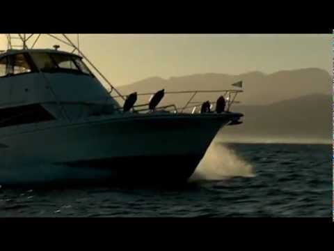 Adrenalin Fiji - Opulence Leisure Charters