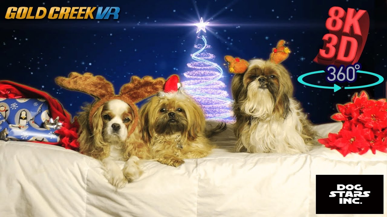8K 3D 360 - SUPER PUPS CHRISTMAS CARD