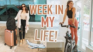 Week In My Life! - Workouts, Traveling, & Filming a Podcast!   Jeanine Amapola Vlogs