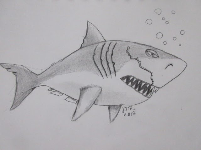 how to draw megalodon step by step